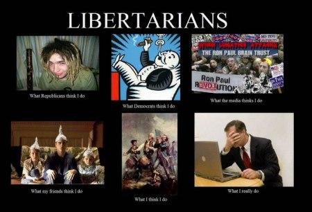 what-libertarians-do