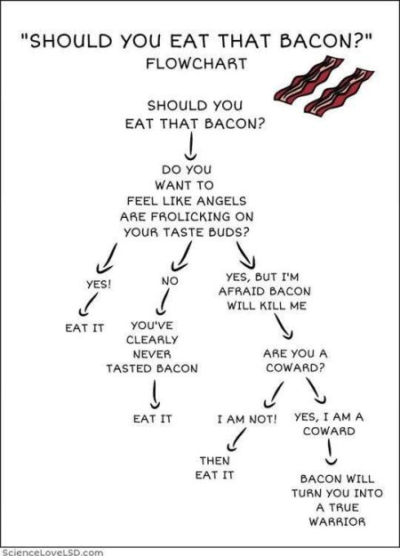 bacon-flowchart